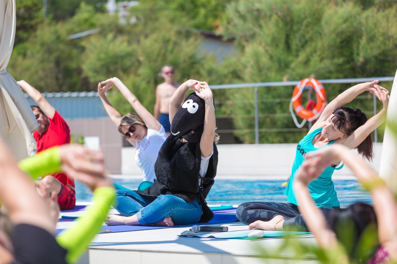 Crna ovca vježba jogu.jpg