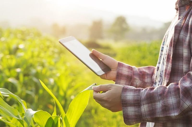 13-Poljoprivreda-okoliç-i-klimatske-promjene-uvod.jpg